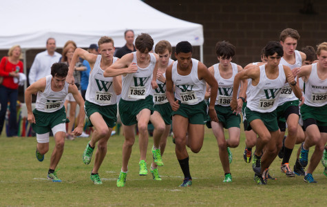 Boys XC take region and focus on state