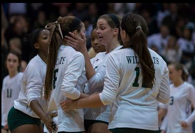 Volleyball finishes memorable season despite finals loss
