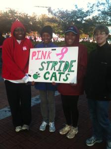 Breast cancer walk raises awareness