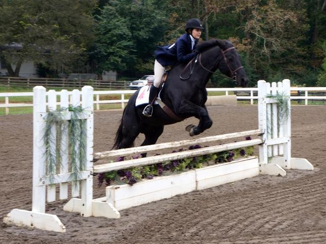 Equestrian team wows judges and Westminster community alike