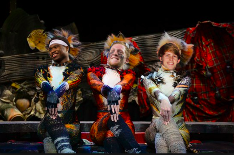 Friday Night Cats: Romberg's new Broadway musical soars