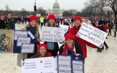 Women's marches make global impact