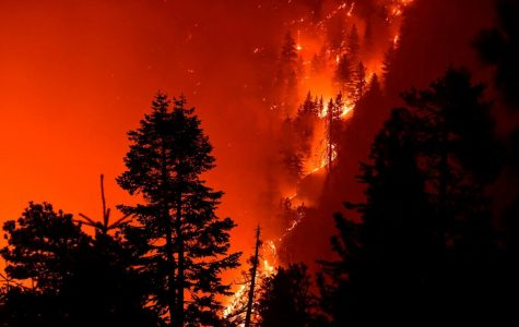 Wildfires continue to engulf the western United States