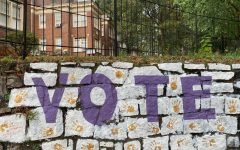Lagisetti's mural across a stone wall inspires viewers to vote.