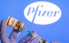 The approved and endorsed Pfizer COVID-19 Vaccine. REUTERS/Dado Ruvic/File Photo